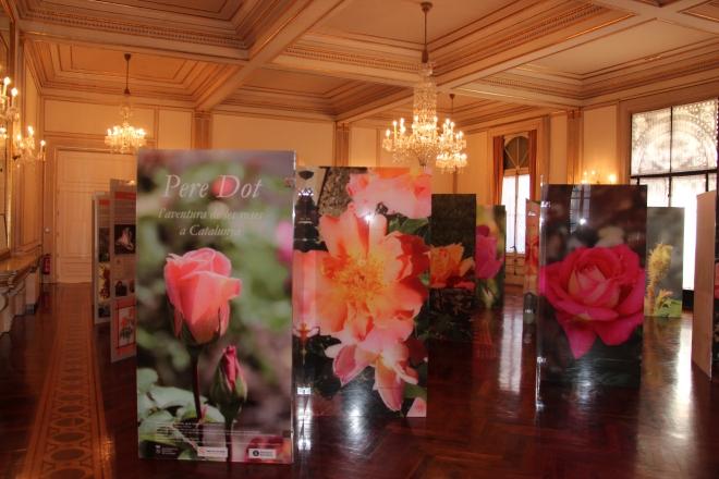 L'exposició al Palau de Pedralbes durant Barcelona Rose Convention, maig del 2014
