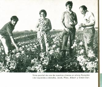 Jordi, Pilar,Albert i Simó als camps de conreu de Moja, Alt Penedès, dècada anys 1960. Foto: arxiu família Dot.